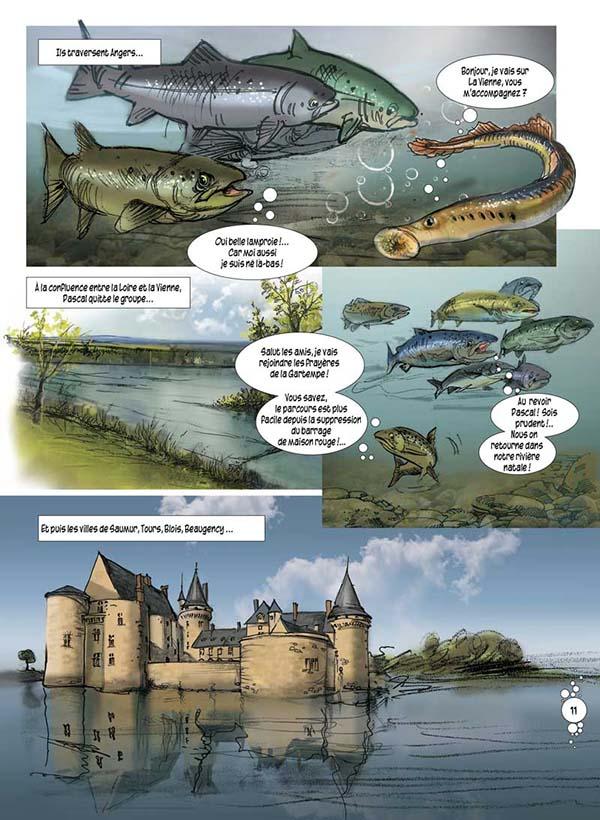 L'Allier du Saumon - éditions roymodus